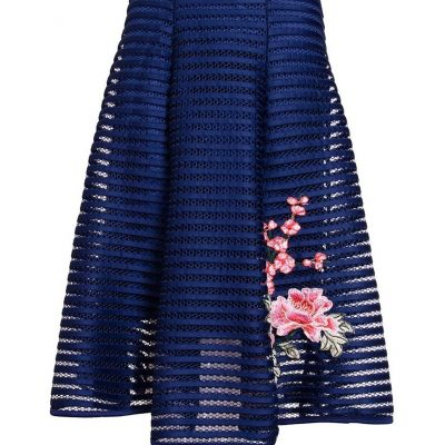Mesh Ribbed Embroidered Midi Skirt - Sojoee.com